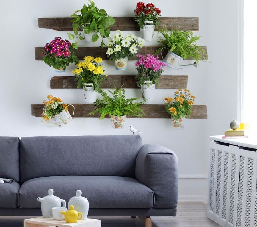 Salones Decorado Con Plantas