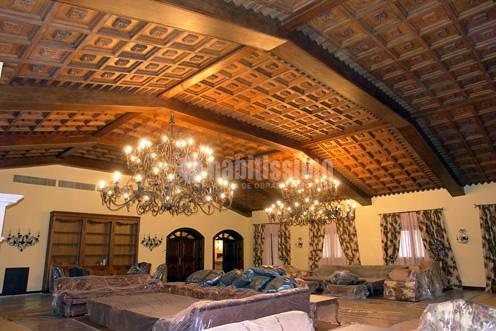 Pimugs01 - Revestimientos para techos interiores ...