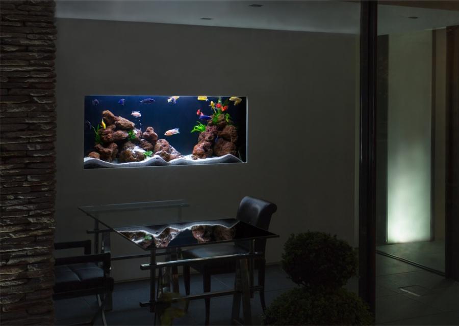 Foto acuario incrustado en la pared de elenatorrente d az 827866 habitissimo - Pecera de pared ...