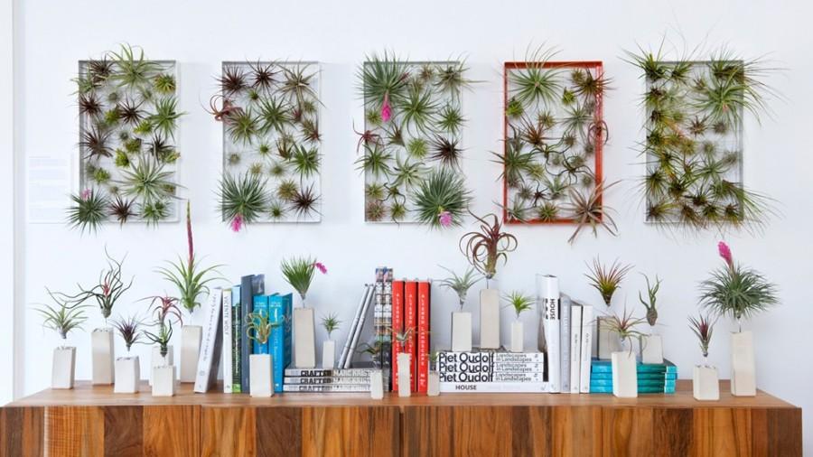 algunas-ideas-para-decorar-con-plantas