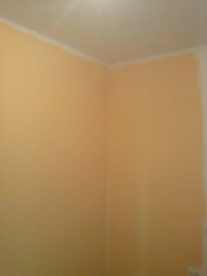 Alisar y pintar habitacion