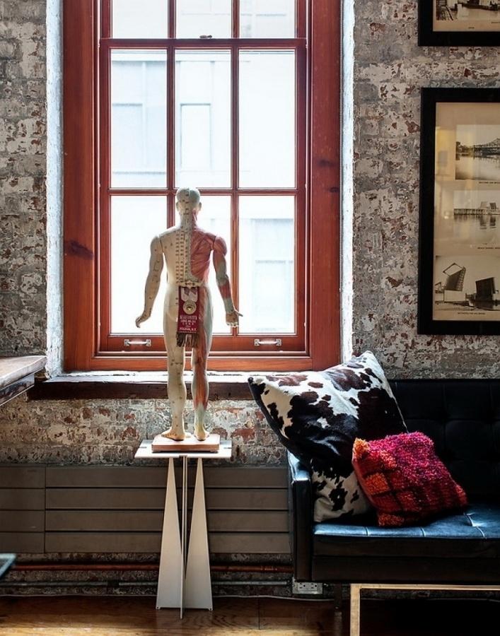 Foto: Lámina Anatomía Decorar de Ma. José Jiménez #861497 - Habitissimo