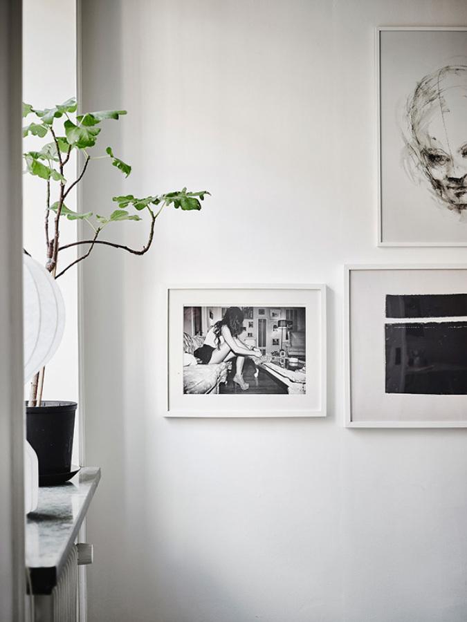 fotos en blanco y negro en la pared