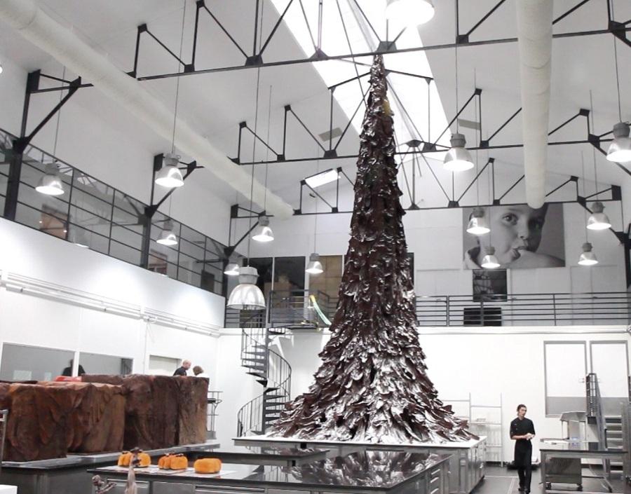 árbol-chocolate