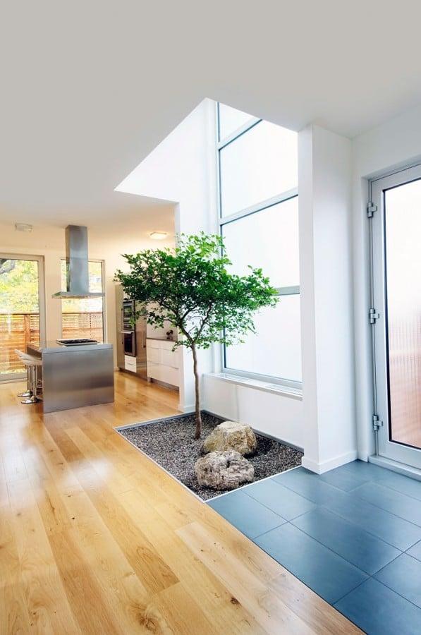 Hogares diferentes casas con rboles en su interior for Arbol interior