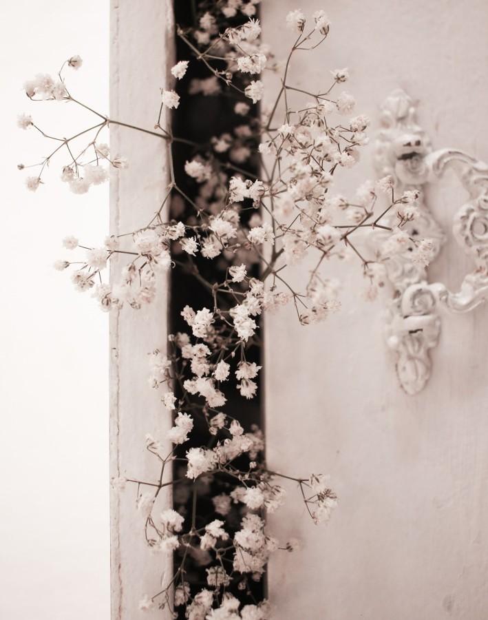 Armario con ramas