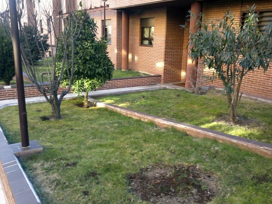 Arreglo jard n ideas jardineros - Arreglo de jardines ...