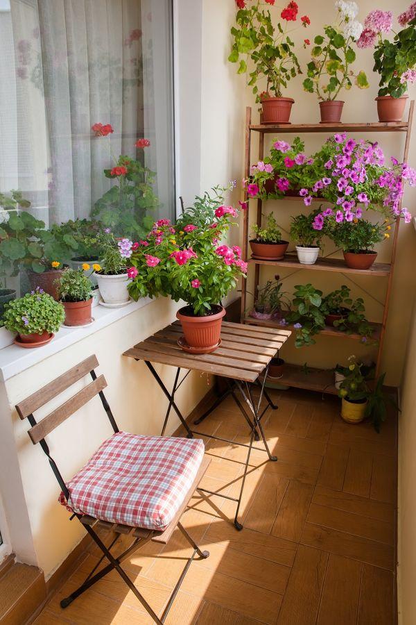 Balcón con estanterías