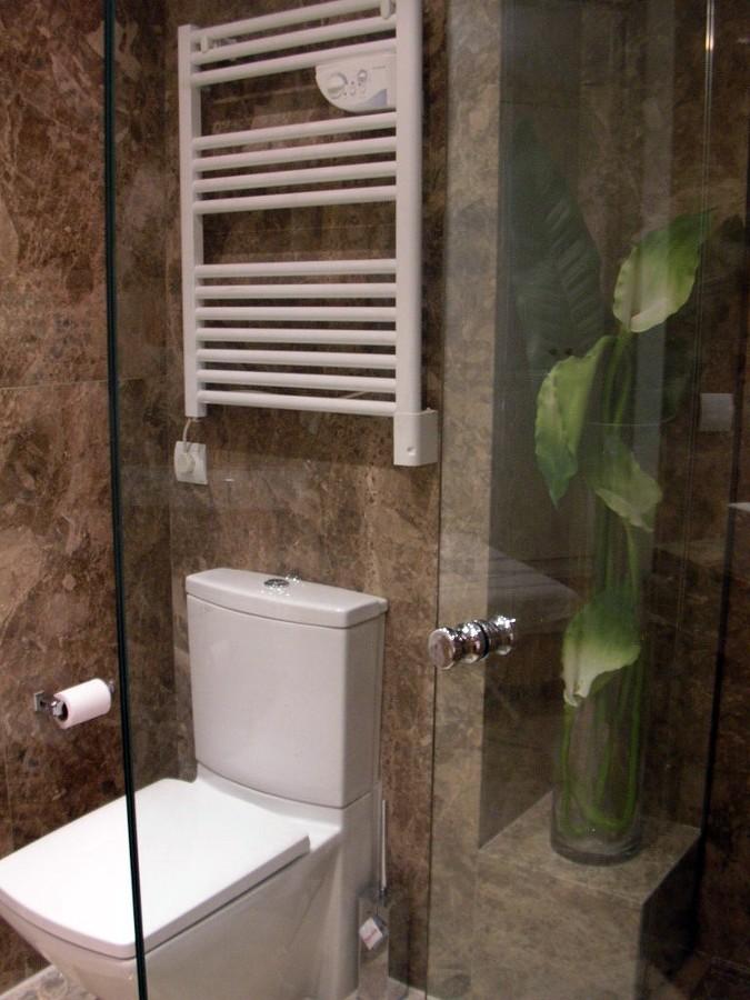 Baño principal zona inodoro