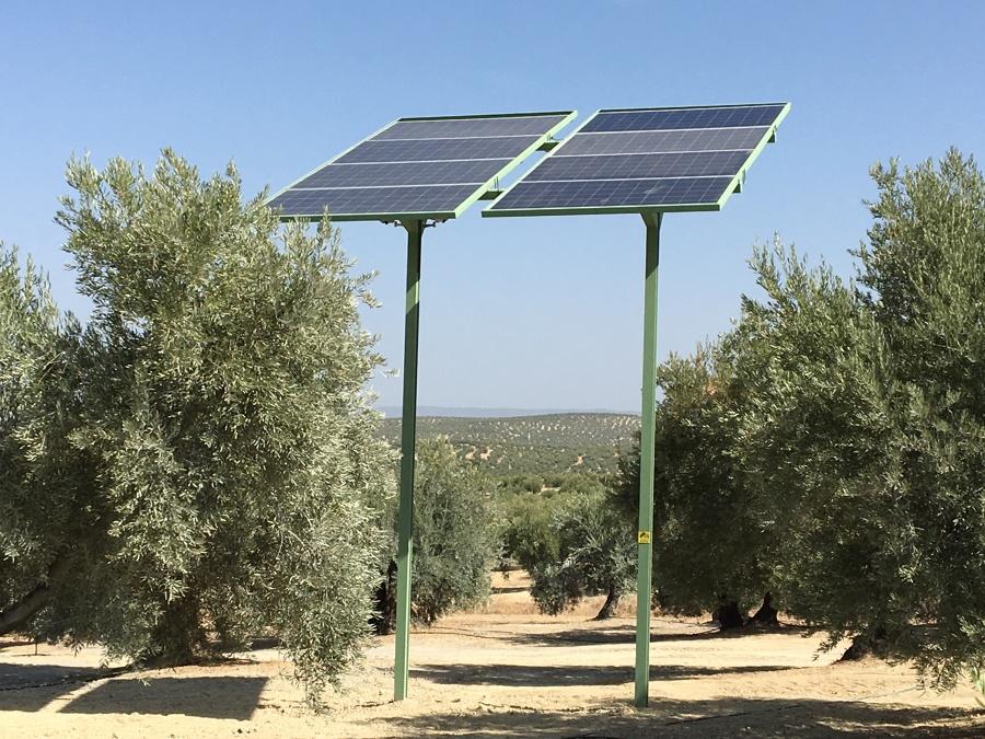 Bombeo Solar Fotovoltaico para bomba trifásica convencional de baja potencia