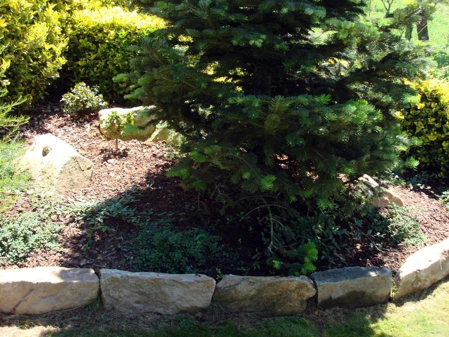 Foto borduras piedra natural de roberto jardineria y for Borduras de jardin baratas