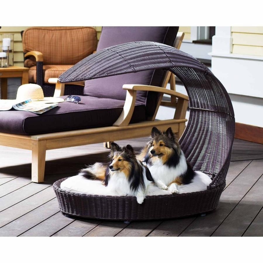C mo preparar tu casa para una nueva mascota ideas - Como hacer camitas para perros ...