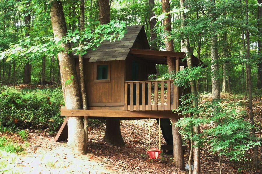 foto casa arbol: