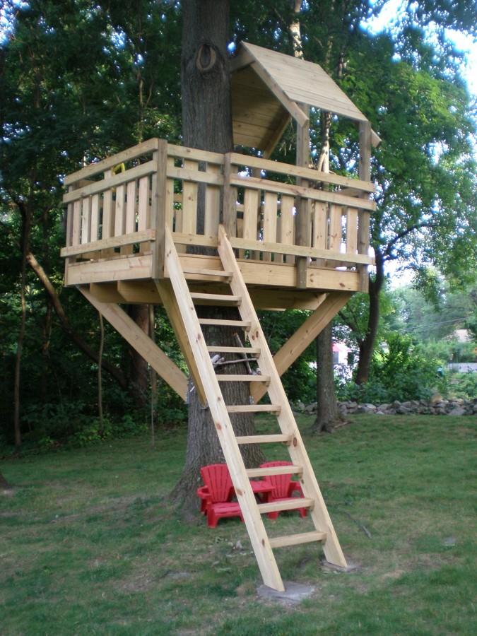 Foto casa del rbol sencilla de marta 916340 habitissimo - Como construir una casa en un arbol ...