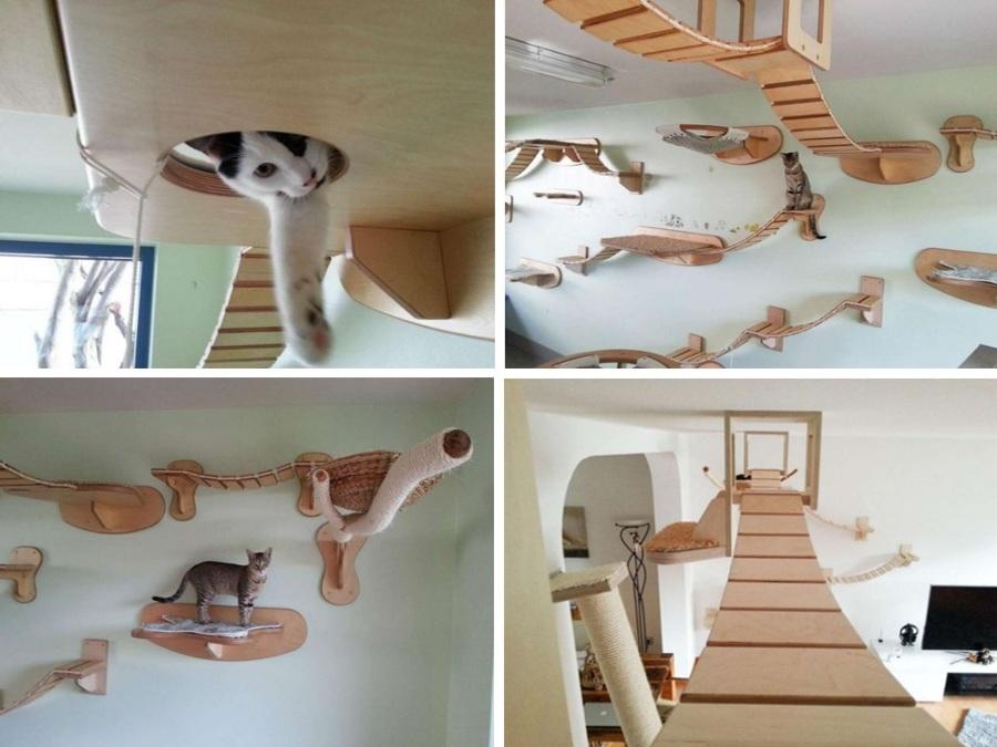 18 locuras para mascotas ideas top grafos - Katzenmobel design ...