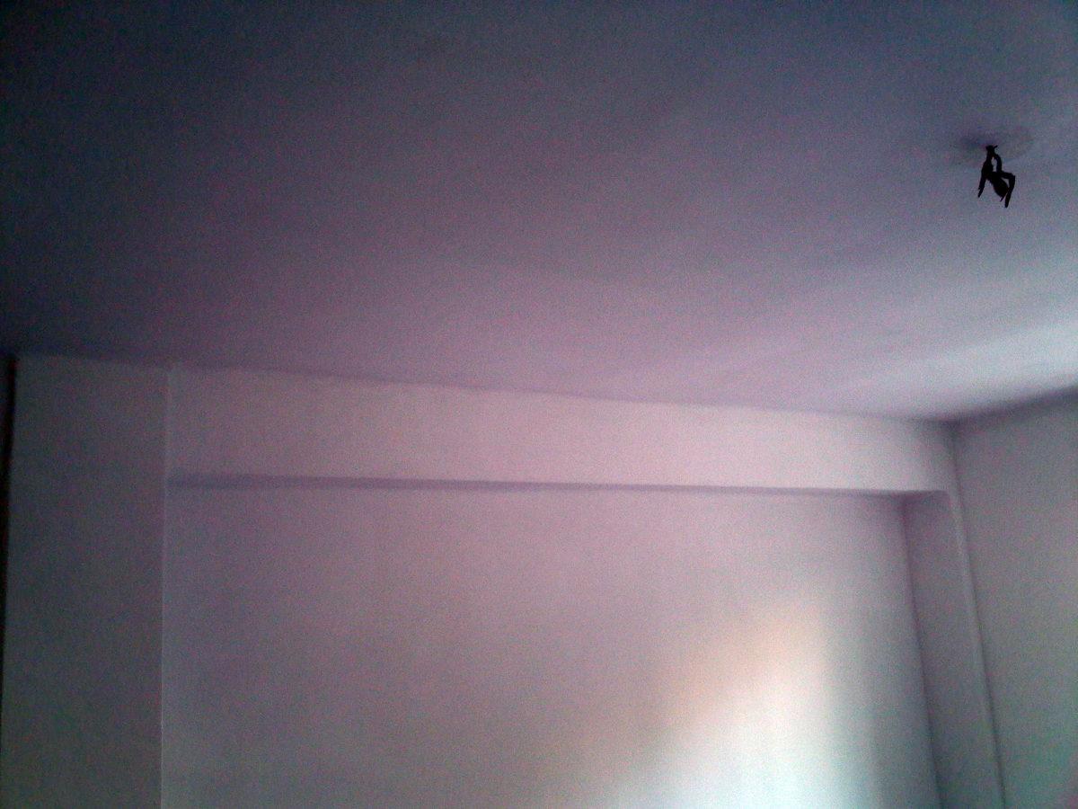 Techo y paredes tratado y pintado