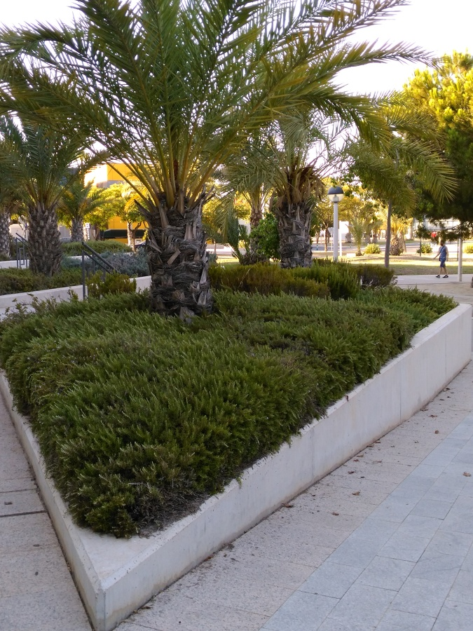 Centro de negocios Bulevar Parque