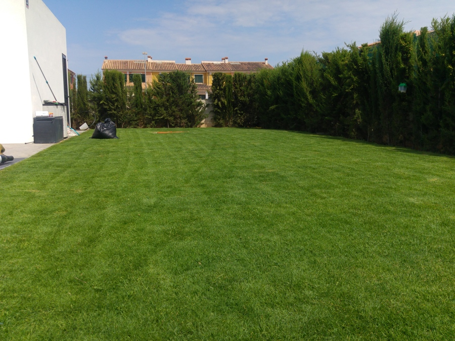 Creacion de jardines riegos por aspersi n y colocaci n de for Creacion de jardines
