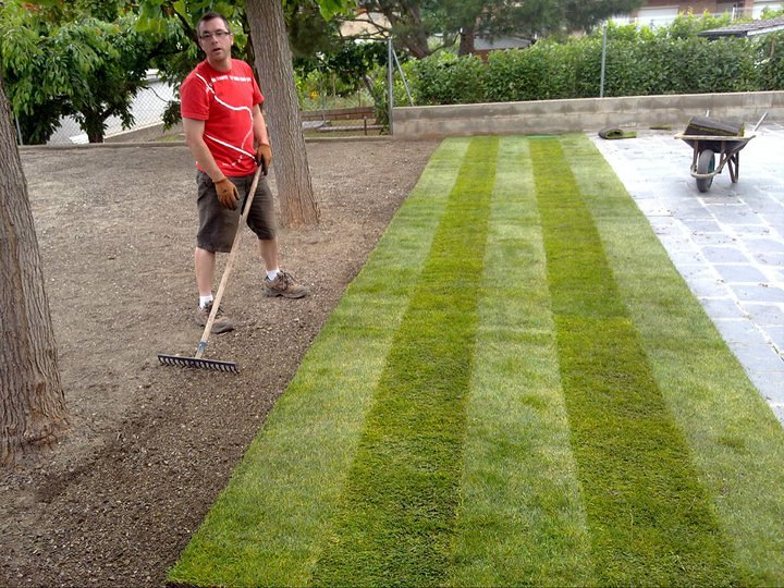 C sped en tepes ideas jardineros for Tepes de cesped baratos