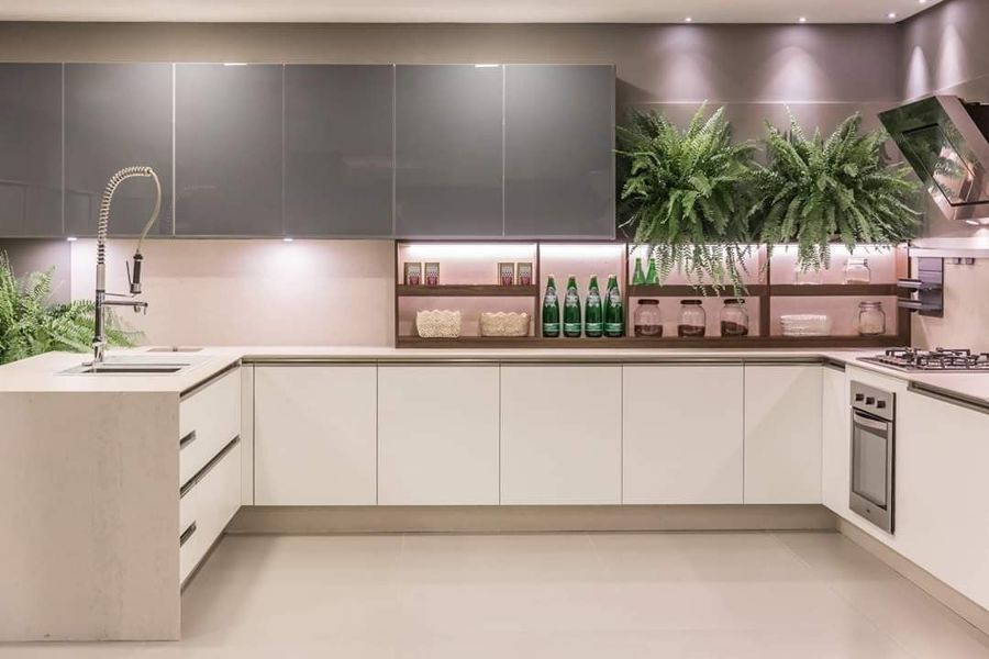 Cocina moderna con plantas decorativas