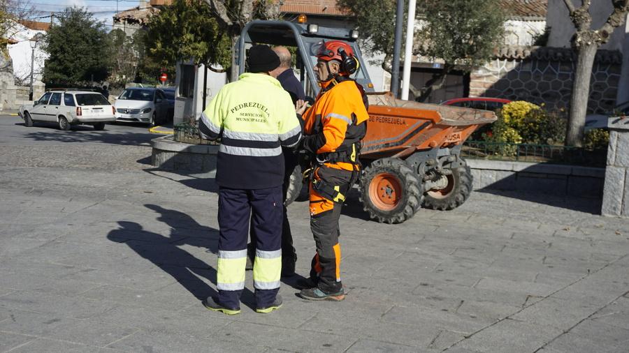 Colaboración con los servicio municipales