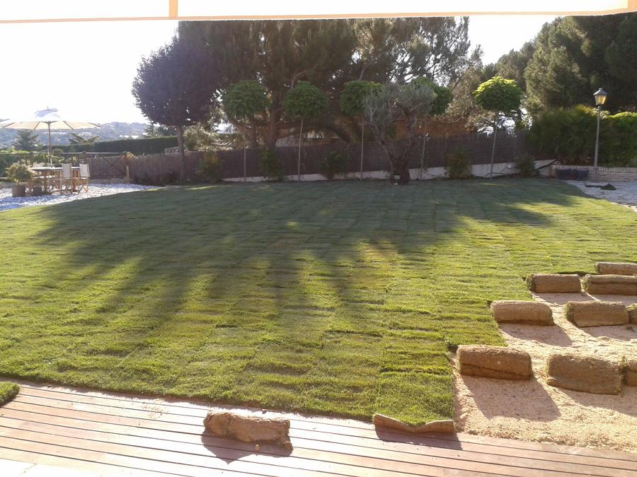 Creaci n de jardines madrid ideas jardineros for Creacion de jardines