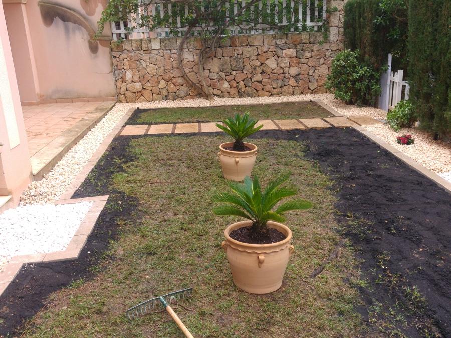 colocación de nuevas plantas para decoración..