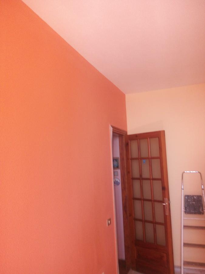 Colocaci n de suelo laminado y pintado de tres colores de - Color pintura pared ...