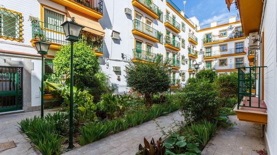 Conjunto de viviendas andaluzas