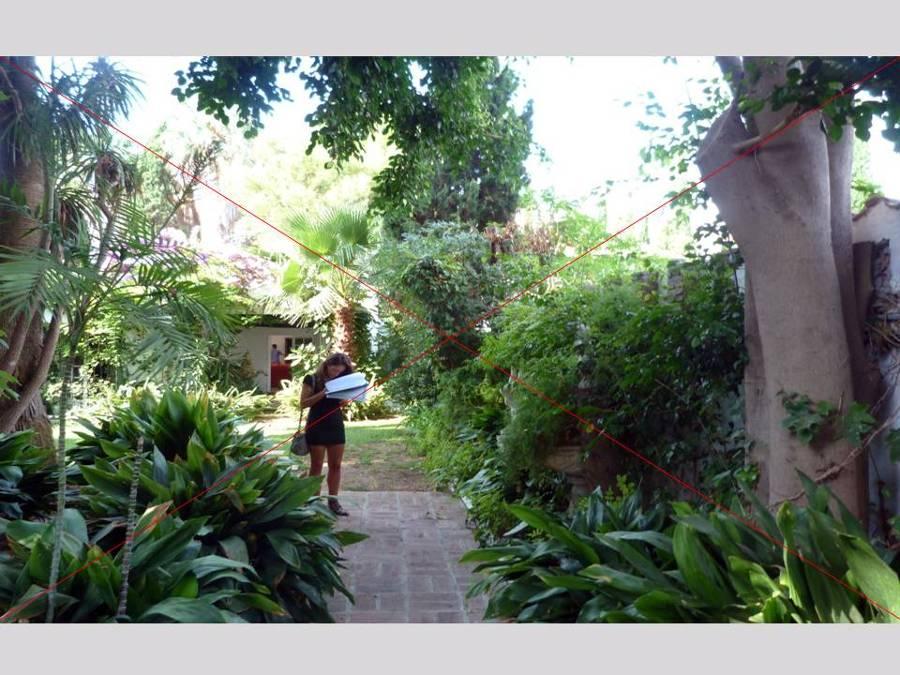 Cortijo Blanco Jardin