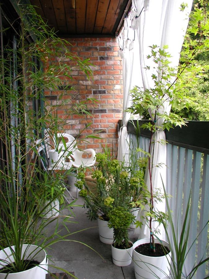 C mo proteger tu balc n de las miradas ideas decoradores - Balcones con encanto ...
