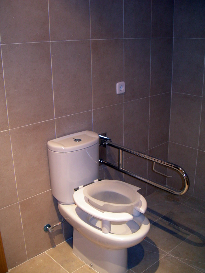 Ba o adaptado para discapacitados for Bano de discapacitados