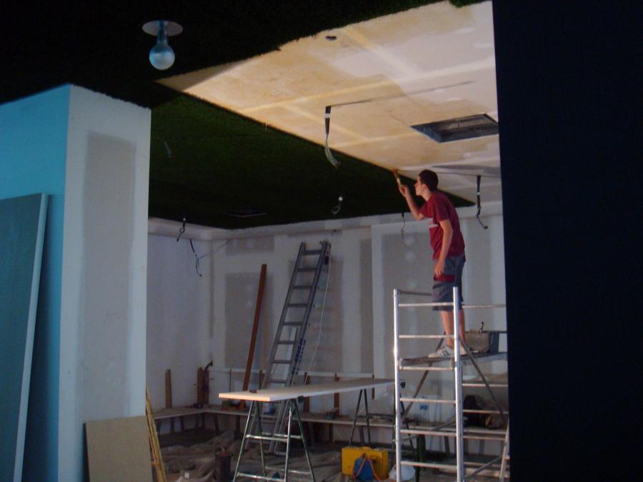 Decoración de techo con césped