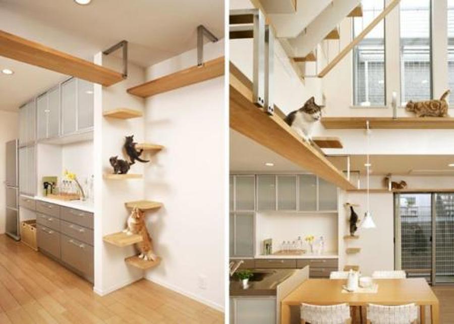 Cómo Decorar una Casa Teniendo Gatos   Ideas Artículos Decoración