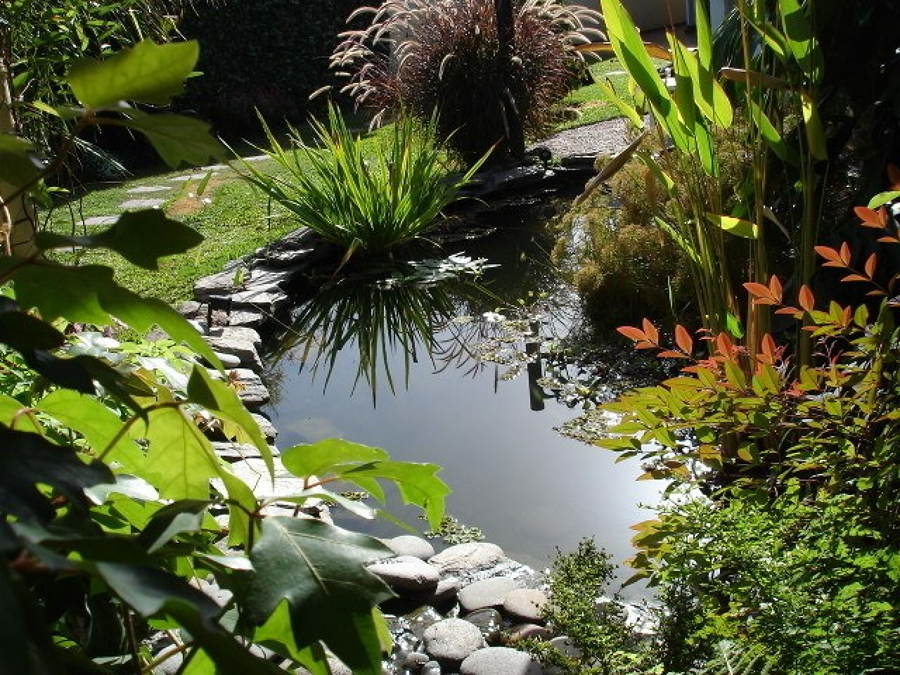 jardín cenegal