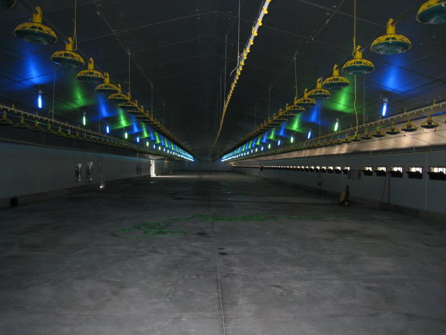 Detalle instalaciones nave principal