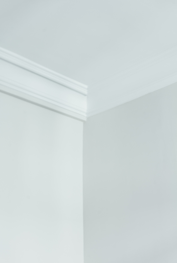 Detalle moldura techo