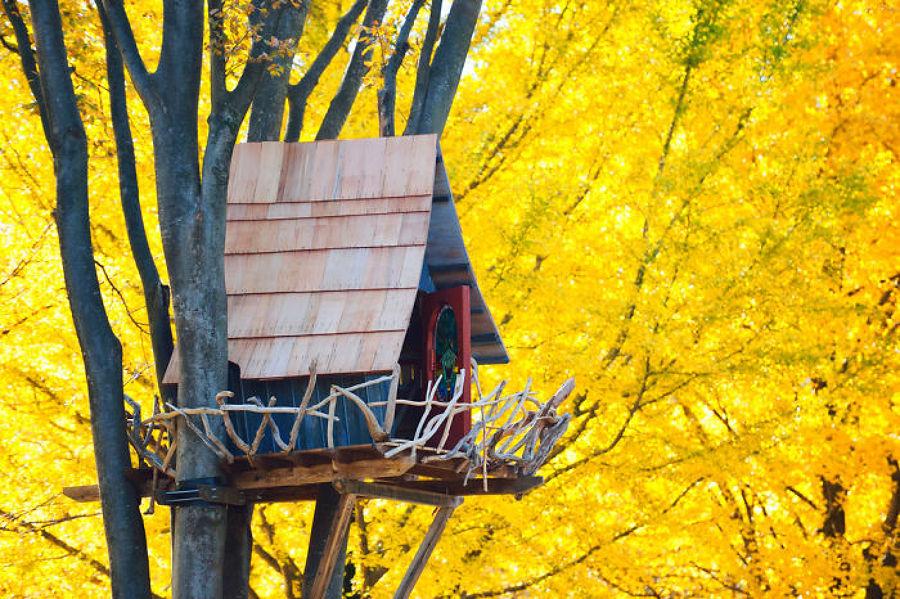 casa de árbol de diseño