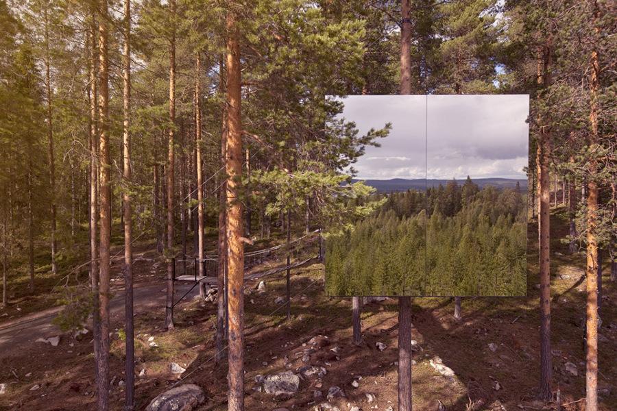 casa de árbol don vidrios reflectantes