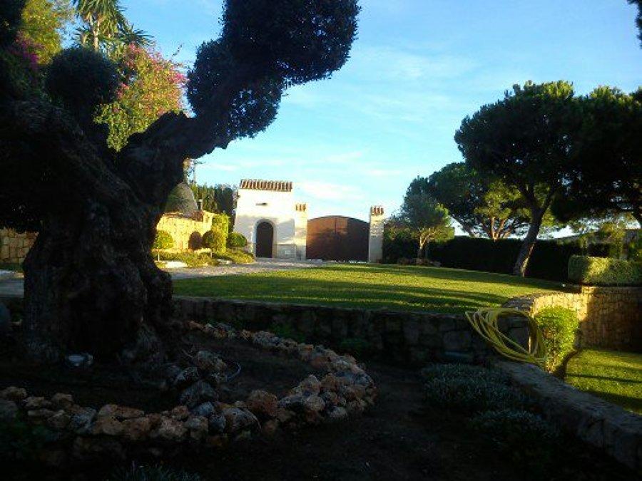 diseñamos tu jardín a medida
