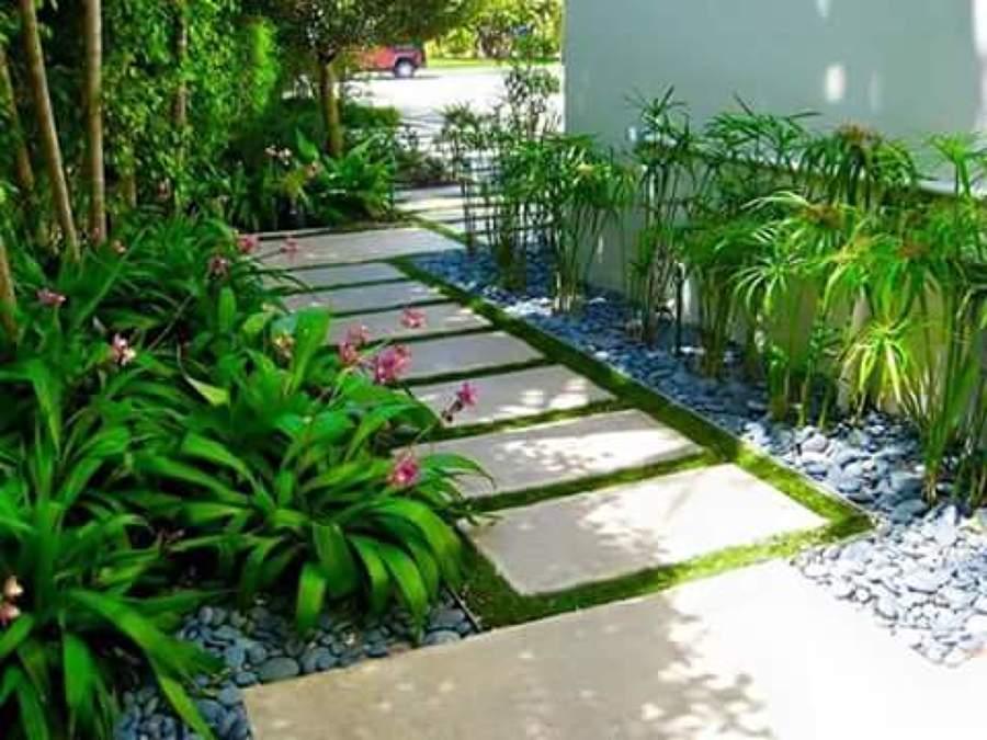 dise o y mantenimiento de jardines ideas jardineros