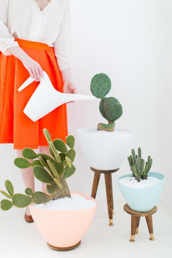 DIY PASCUERO expositor de plantas