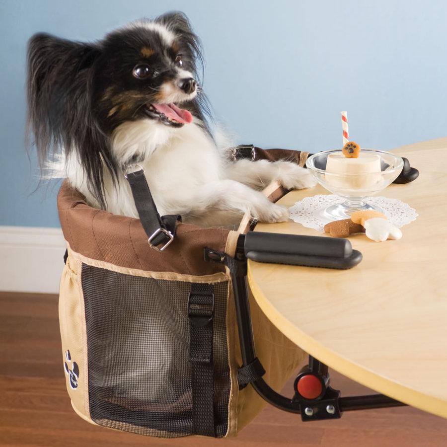 doggy-high-chair