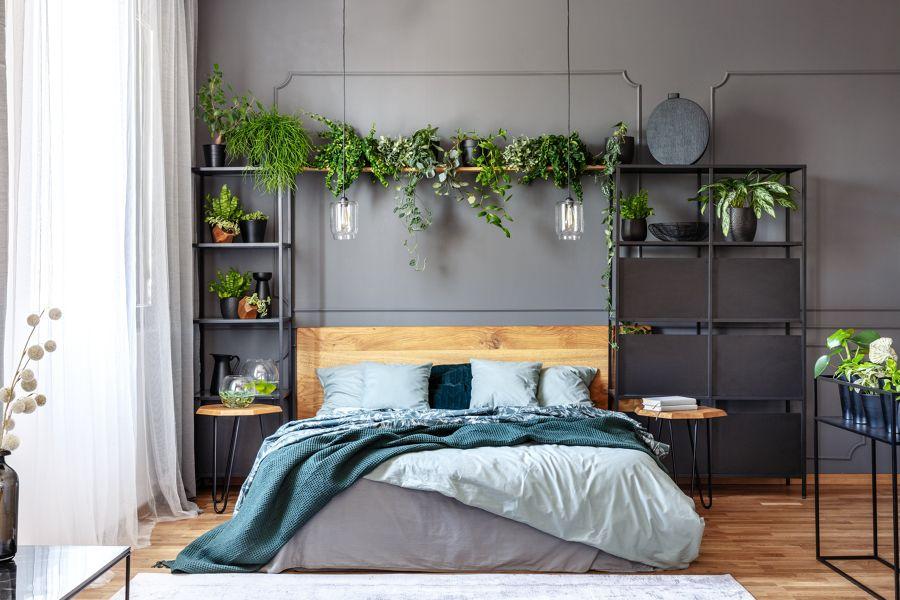 Dormitorio  con plantas naturales