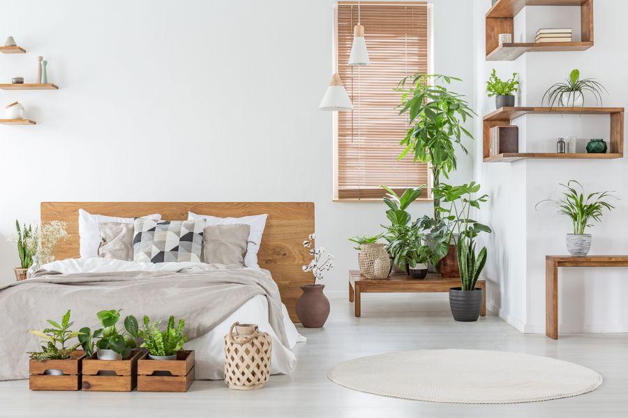 Dormitorio de estilo colonial con plantas