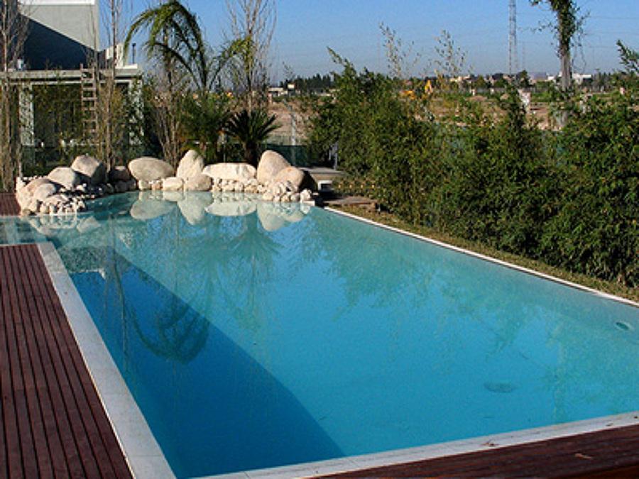 C mo equipar tu piscina parte 2 ideas construcci n for Limpiadores de piscinas