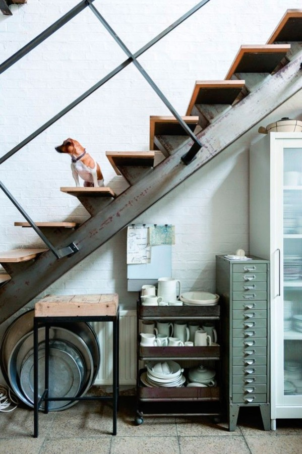escalera perro casa hipster