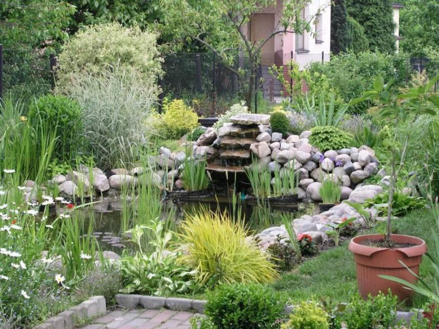 estanque en casa