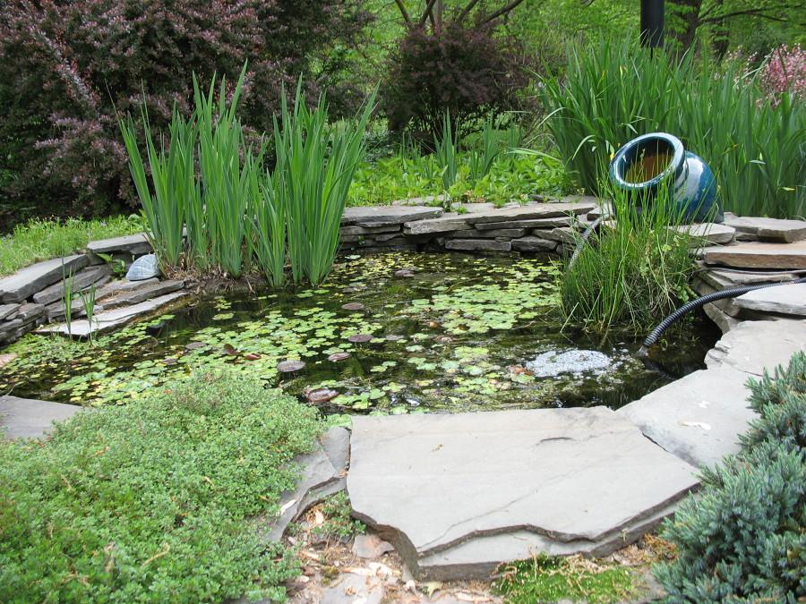 Todo lo que debes saber para construir un estanque for Estanques prefabricados grandes