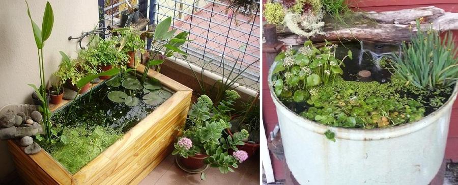 Todo lo que debes saber para construir un estanque for Estanque artificial para tortugas